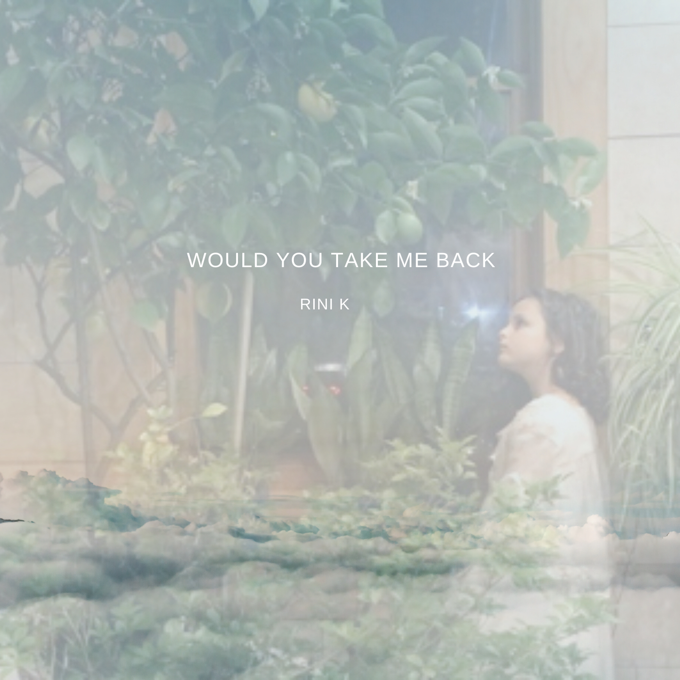 Would You Go With Me - Rini K
